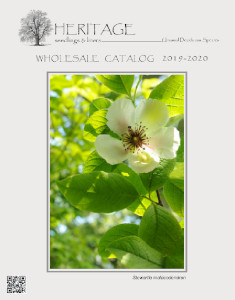 Heritage Seedlings 2019-2020 Wholesale Catalog